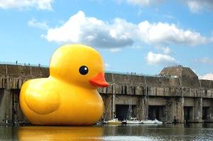 man-and-van-giant-rubber-duck